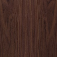 Natural walnut veneer